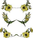 Insieme dei confini floreali di giallo dell'acquerello Immagini Stock Libere da Diritti