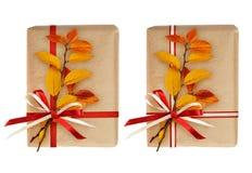 Insieme dei contenitori di regalo con le foglie dell'arco e di autunno del nastro Immagini Stock Libere da Diritti