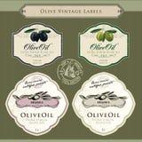 Insieme dei contrassegni dell'olio di oliva Fotografia Stock