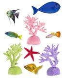 Insieme dei coralli e dei pesci di colore isolati su bianco Immagine Stock