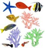 Insieme dei coralli e dei pesci isolati colore Fotografia Stock