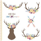Insieme dei corni dei cervi con i fiori Fotografia Stock Libera da Diritti