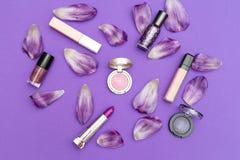 Insieme dei cosmetici decorativi su un fondo viola con i petali Fotografie Stock Libere da Diritti