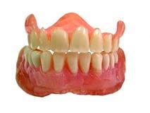 Insieme dei denti falsi Fotografie Stock
