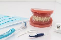 Insieme dei denti falsi con gli strumenti di pulizia Immagini Stock