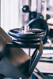 Insieme dei dischi dei bilancieri del metallo sul supporto del bilanciere nella palestra di forma fisica Fotografia Stock