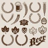 Disegni dell'ornamentale degli ingredienti della birra Immagine Stock