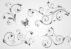 Insieme dei disegni floreali di turbinio Fotografie Stock
