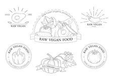 Insieme dei distintivi delle verdure, del logos e degli elementi di progettazione Fotografia Stock Libera da Diritti