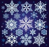 Insieme dei fiocchi di neve illustrazione di stock