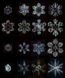 Insieme dei fiocchi di neve naturali delle foto Fotografia Stock Libera da Diritti