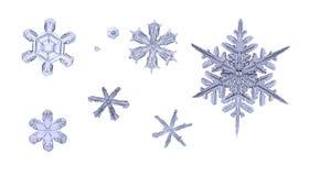 Insieme dei fiocchi di neve naturali isolati sul primo piano bianco di macro del fondo Fotografie Stock