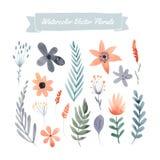 Insieme dei fiori illustrazione di stock