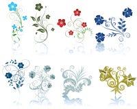 Insieme dei fiori Fotografie Stock Libere da Diritti