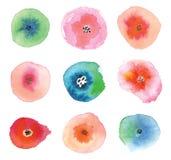 Insieme dei fiori dell'acquerello Immagini Stock Libere da Diritti