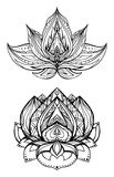 Insieme dei fiori di loto con il modello di boho Fotografia Stock Libera da Diritti