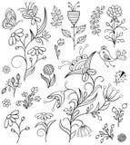 Insieme dei fiori disegnati a mano Fotografia Stock
