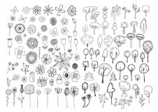 Insieme dei fiori e degli scarabocchi degli alberi Immagine Stock