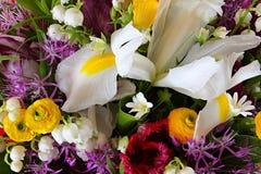 Insieme dei fiori variopinti differenti con la foglia Vista superiore del mazzo Immagine Stock