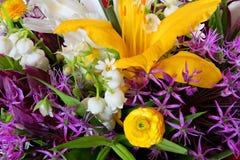 Insieme dei fiori variopinti differenti Vista superiore del mazzo Immagine Stock Libera da Diritti