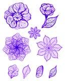 Insieme dei fiori variopinti isolati inchiostro Illustrazione di vettore EPS10 Fotografia Stock