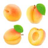 Insieme dei frutti differenti dell'albicocca isolato Fotografia Stock