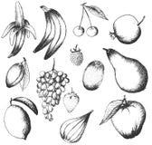 Insieme dei frutti disegnati a mano Immagini Stock Libere da Diritti