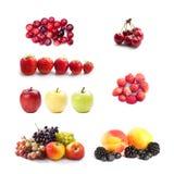 Insieme dei frutti e della fotografia delle bacche Mora dell'albicocca dell'uva della mela del mirtillo delle fragole della cilie Fotografie Stock Libere da Diritti