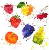 Insieme dei frutti e delle bacche che disegnano dall'acquerello Fotografia Stock