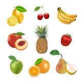 Insieme dei frutti e delle bacche di vettore Fotografie Stock