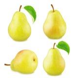 Insieme dei frutti gialli della pera Immagini Stock Libere da Diritti