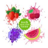 Insieme dei frutti sopra il concetto fresco di Juice Logo Natural Food Farm Products del fondo della spruzzata della pittura illustrazione vettoriale