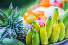 Insieme dei frutti tropicali freschi compreso la banana, arancia, ananas Immagine Stock Libera da Diritti