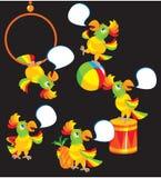 Insieme dei fumetti del pappagallo Fotografia Stock
