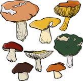 Insieme dei funghi lineari del disegno Fotografia Stock