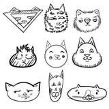 Insieme dei gatti Gatti di scarabocchio fronti divertenti dei gatti Fotografia Stock