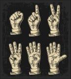 Insieme dei gesti delle mani che contano zero - cinque Segno maschio della mano Illustrazione incisa annata di vettore isolata Fotografia Stock