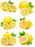Insieme dei limoni isolati sui precedenti bianchi Fotografie Stock