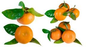 Insieme dei mandarini con le foglie, primo piano Fotografia Stock