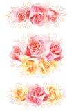 Insieme dei mazzi rosa del fiore dell'acquerello Immagini Stock