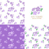 Insieme dei modelli di fiori viola senza cuciture Immagini Stock