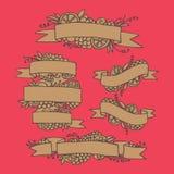 Insieme dei nastri decorati della frutta di scarabocchio Immagini Stock