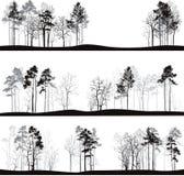 Insieme dei paesaggi differenti con i pini Fotografia Stock