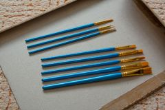 Insieme dei pennelli Fotografie Stock