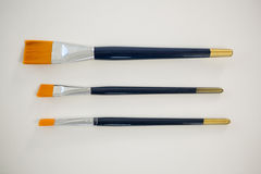 Insieme dei pennelli sistemati in una fila Fotografia Stock Libera da Diritti