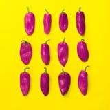Insieme dei peperoni luminosi ordinatamente sistemati su fondo giallo per la u Fotografia Stock