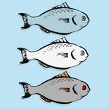Insieme dei pesci di vettore Fotografia Stock Libera da Diritti