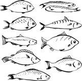 Insieme dei pesci lineari del disegno Fotografia Stock Libera da Diritti