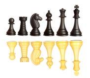 Insieme dei pezzi degli scacchi in bianco e nero Immagini Stock