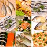 Insieme dei piatti di pesci Immagine Stock Libera da Diritti